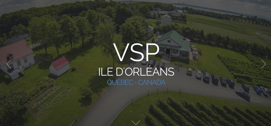 VSP_preview_eziweb