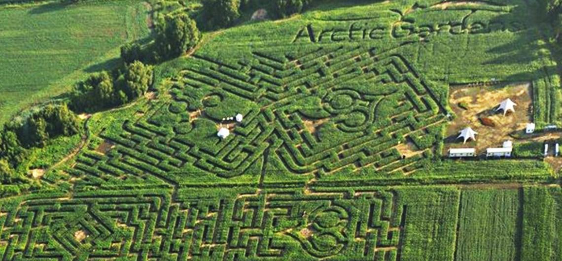AG_labyrinthe-1